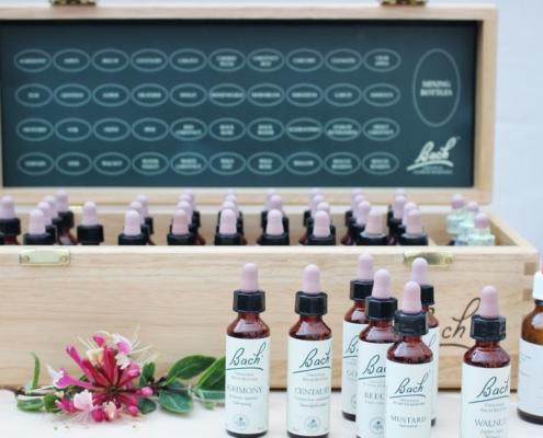 traeboks-saettet-bach-blomstermedicin-de-38-blomsterdraaber-anette-lei